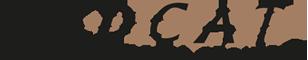 Logo von WildCat Media Service - Kreatives Webdesign, Drucksachen und Hosting!